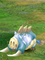 Snowy Tusk Boar