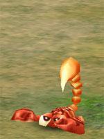 Baby Scorpion