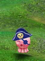 Pirate Squidy