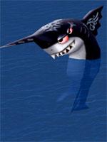 Black Finned Shark